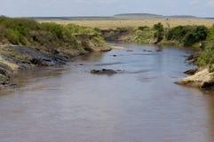 Paesaggio africano della regione selvaggia Fotografia Stock