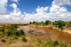 Paesaggio africano della regione selvaggia immagine stock libera da diritti