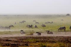 Paesaggio africano della regione selvaggia Fotografie Stock Libere da Diritti