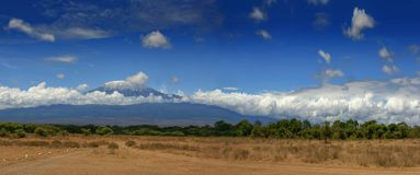 Paesaggio africano della Tanzania della montagna di Kilimanjaro Immagini Stock Libere da Diritti