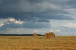 Paesaggio agricolo con cielo blu e le pile di paglia dorata Immagine Stock