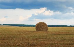 Paesaggio agricolo con cielo blu e le pile di paglia dorata Fotografie Stock Libere da Diritti