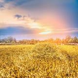 Paesaggio agricolo con il giacimento e il sunrset della paglia Immagini Stock Libere da Diritti