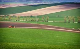 Paesaggio agricolo con il trattore che ara un campo marrone a strisce in Moravia del sud al tramonto, bella vista su Rolling Hill Fotografie Stock