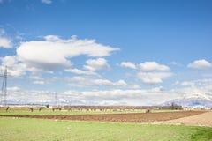 Paesaggio agricolo Con l'aratro del trattore un campo Fotografia Stock Libera da Diritti
