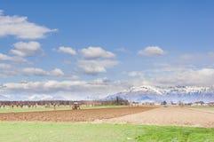 Paesaggio agricolo Con l'aratro del trattore un campo Fotografia Stock