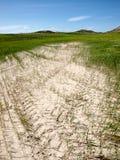 Paesaggio agricolo del deserto con un cielo blu luminoso Fotografie Stock Libere da Diritti