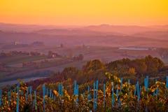 Paesaggio agricolo della vista di tramonto della Croazia Immagine Stock
