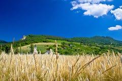 Paesaggio agricolo idilliaco della montagna della Croazia Fotografia Stock