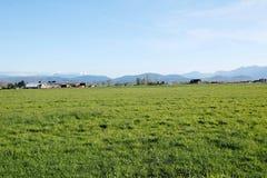 Paesaggio agricolo occidentale del Canada Fotografie Stock Libere da Diritti
