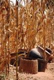 Paesaggio agricolo in Tanzania - in Africa Immagini Stock