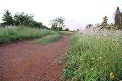 paesaggio al crepuscolo Fotografie Stock Libere da Diritti