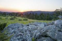 Paesaggio, alba soleggiata in un campo Fotografie Stock Libere da Diritti