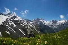 Paesaggio all'alta strada alpina di Grossglockner, Austria Fotografia Stock