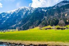 Paesaggio all'aperto della valle delle alpi svizzere Fotografie Stock