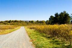Paesaggio all'arboreto della Virginia Fotografia Stock Libera da Diritti