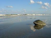 Paesaggio alla spiaggia. Fotografie Stock