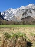 Paesaggio alle alpi bavaresi, Germania Fotografie Stock