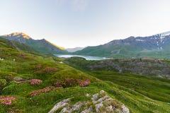 Paesaggio alpino ad alba ad elevata altitudine Immagine Stock Libera da Diritti
