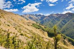 Paesaggio alpino in alpi del sud, Nuova Zelanda Immagine Stock