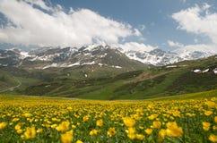 Paesaggio alpino bello immagini stock