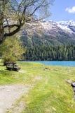 Paesaggio alpino con il lago st Moritz, Svizzera Fotografie Stock Libere da Diritti
