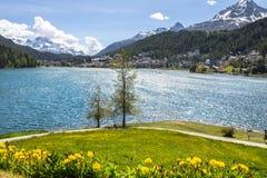 Paesaggio alpino con il lago st Moritz, Svizzera Immagini Stock Libere da Diritti