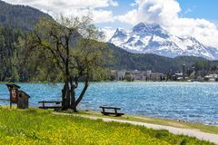 Paesaggio alpino con il lago st Moritz, Svizzera Fotografie Stock