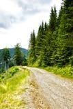 Paesaggio alpino con la strada Fotografia Stock