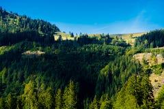 Paesaggio alpino con le montagne e le foreste in Austria Immagine Stock