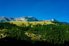 Paesaggio alpino con le montagne e le foreste in Austria Fotografia Stock