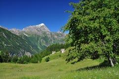 Paesaggio alpino della gamma Alpi italiane, leone del monte Immagini Stock