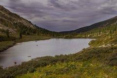 Paesaggio alpino della montagna con il lago Karakol in Altai Immagini Stock