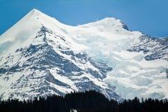 Paesaggio alpino della montagna delle alpi, cima di Europa, Svizzera Immagini Stock