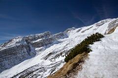 Paesaggio alpino della montagna di inverno Fotografia Stock