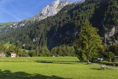 Paesaggio alpino della montagna Estate in alpi svizzere Fotografia Stock