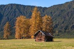 Paesaggio alpino di autunno con una capanna alpina Immagini Stock Libere da Diritti