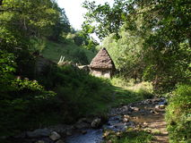 Paesaggio alpino di estate con i campi e le valli verdi, crusca, la Transilvania, Romania, Europa Fotografia Stock Libera da Diritti