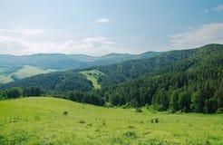 Paesaggio alpino di estate con le montagne boscose verdi Fotografia Stock