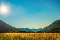 Paesaggio alpino di estate con lo spazio della copia Fotografia Stock Libera da Diritti