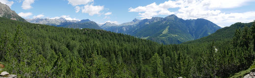 Paesaggio alpino di estate in Valmalenco Fotografia Stock