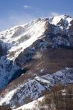 Paesaggio alpino di inverno Fotografia Stock