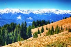 Paesaggio alpino di mattina della primavera di Dyllic con i prati verdi freschi Immagini Stock Libere da Diritti