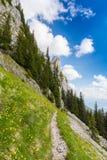 Paesaggio alpino drammatico di estate, nelle alpi di Transylvanian, con le nuvole e la foschia Fotografie Stock