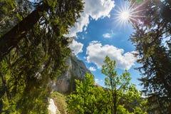 Paesaggio alpino drammatico di estate, nelle alpi di Transylvanian, con le nuvole e la foschia Immagine Stock