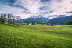 Paesaggio alpino idilliaco con i prati verdi, le fattorie e le cime innevate della montagna Fotografia Stock