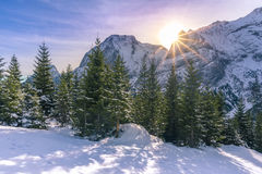 Paesaggio alpino luminoso nell'inverno Fotografie Stock Libere da Diritti