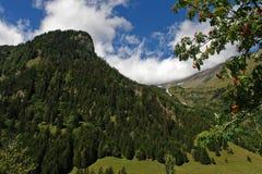 Paesaggio alpino magnifico Immagine Stock