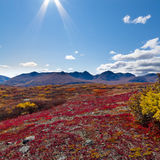 Paesaggio alpino nella caduta fotografie stock libere da diritti