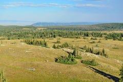 Paesaggio alpino nelle montagne dell'arco della medicina del Wyoming Fotografia Stock Libera da Diritti